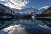 Frozen beauty 2 von Bor Rojnik