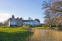 Schloss Basedow, Mecklenburg-Vorpommern, Deutschland von ullrichg