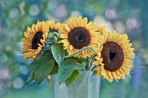 Summer Love by Maria Ismanah  Schulze-Vorberg