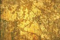 Branches and Sunlight In Gold by suzanne powers