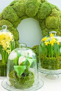Frühling unter Glas von Sina Meyer