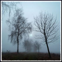 Im Nebel by Irmtraut Prien