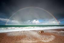 Rainbow and ocean von Olha Rohulya