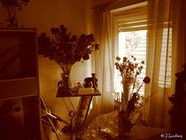 Stillleben - Sepia by lousis-multimedia-world