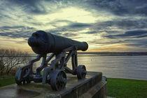 Cannon by David Pringle