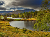 Tarn Hows, Lake District, Cumbria von Louise Heusinkveld