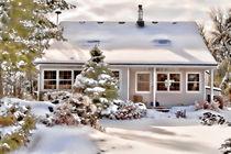 Winter-wonderland0307
