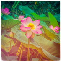 Japanese Giant Water Lilies by jaysanstudio