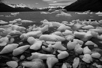 Ice floes in Lago Argentino, Patagonia, b/w by travelfoto