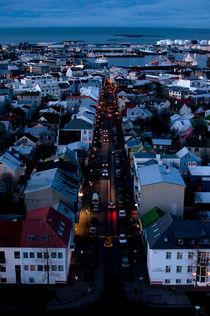 Reykjavik von Hannah Flint