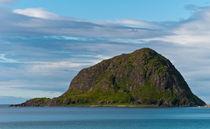 Lofoten islands - Norway by Marco Leonardo Pieropan
