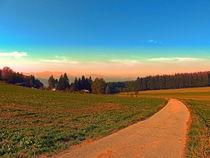 Herbstwanderung in den Sonnenuntergang | Landschaftsfotografie by Patrick Jobst