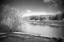 Rio Grande Hot Springs in Black and White von Judy Hall-Folde