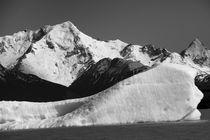Iceberg, Argentina, b/w by travelfoto