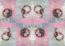 Pink rings von Leopold Brix