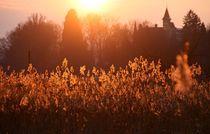 Letztes Sonnenlicht von Bruno Schmidiger