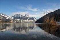 Stille am See von Bruno Schmidiger