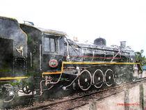 The Knysna Train von Stephen Lawrence Mitchell