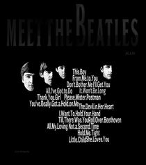 Meet The Beatles Again by Stephen Lawrence Mitchell