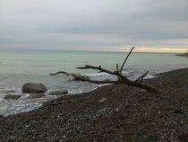 Ostsee Rügen von suma