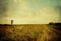 An den Gleisen (II). von Alexandra Köbe
