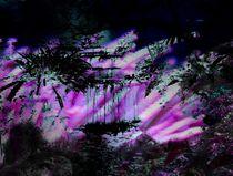 Surrealer Dschungel von mehrfarbeimleben