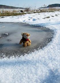 Bär auf Eis von Olga Sander