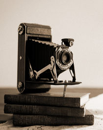 Triple-flash-setup-old-kodak-still-life-045-film-look-sepia
