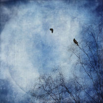 'come fly with me' by Priska  Wettstein