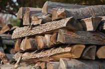 Holzstapel im Schwarzwald von Michael Ebardt