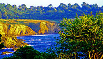 Pacific Coast by Joseph Coulombe