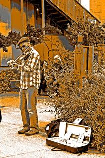 Santa Cruz Street Artist by Joseph Coulombe
