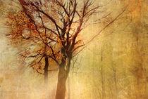 Autumn von Vera Kämpfe