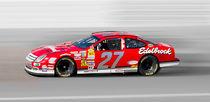USA NASCAR Series by Gunter Nezhoda