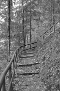 Holztreppe, schwarz weiss Fotografie by Kathleen Follert