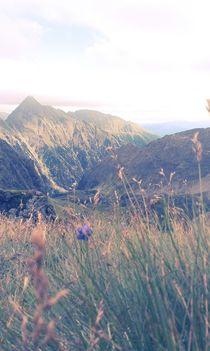 mountain meadow #02 von noname art