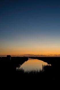 Brazoria Sunrise Reflected  von agrofilms