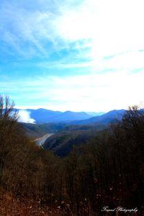 Great Smoky Mountains von forandphotography