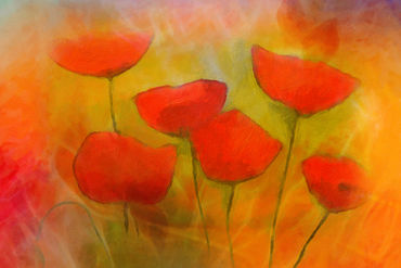 Lovely-poppies