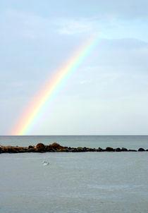 Regenbogen-Horizont von balticus