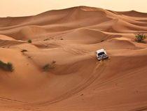 Spaß in der Wüste by mehrfarbeimleben
