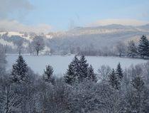 Winter wonderland von mehrfarbeimleben