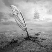 Wingland by Dariusz Klimczak