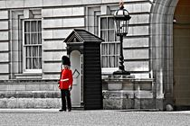 Sentry at Buckingham Palace in London. by Luigi Petro