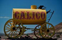 Calico CA von franco franceschi