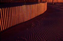 Fence on Coney Island beach at dawn von Peter Coles