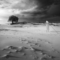 The Hermit by Dariusz Klimczak