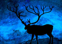The deer at night... by Denis Marsili