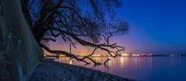 Blaue Stunde by Dennis Stracke