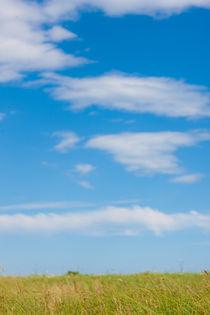 Blue Skies  von Matilde Simas